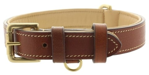 Viosi Leather Padded Dog Collar